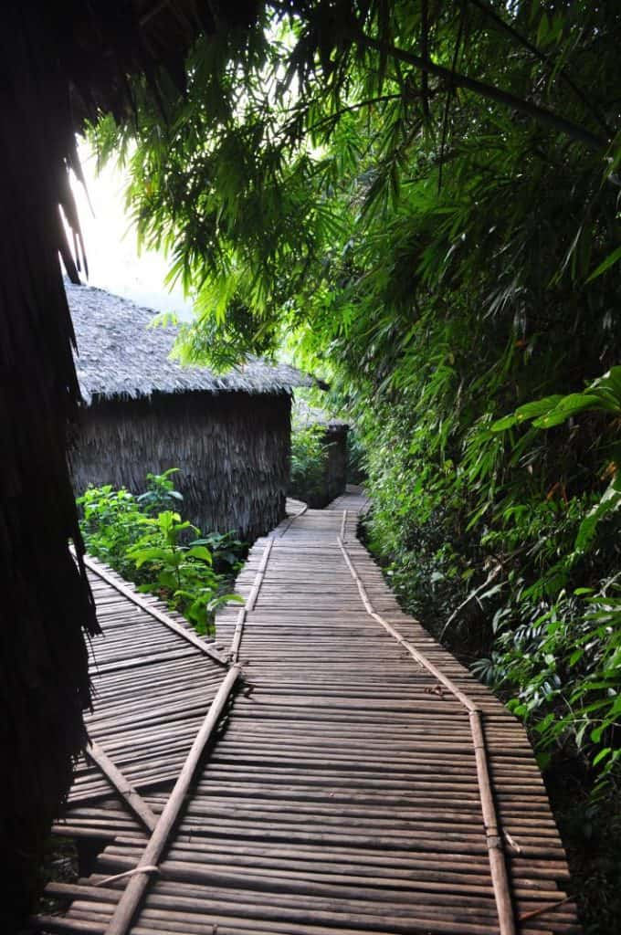 Rainbow Lodge, Tatai River - the path to the jungle bungalows