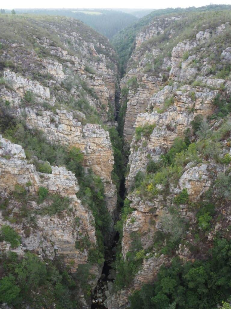 South Africa Tsitsikamma Gorge, Garden Route Itinerary