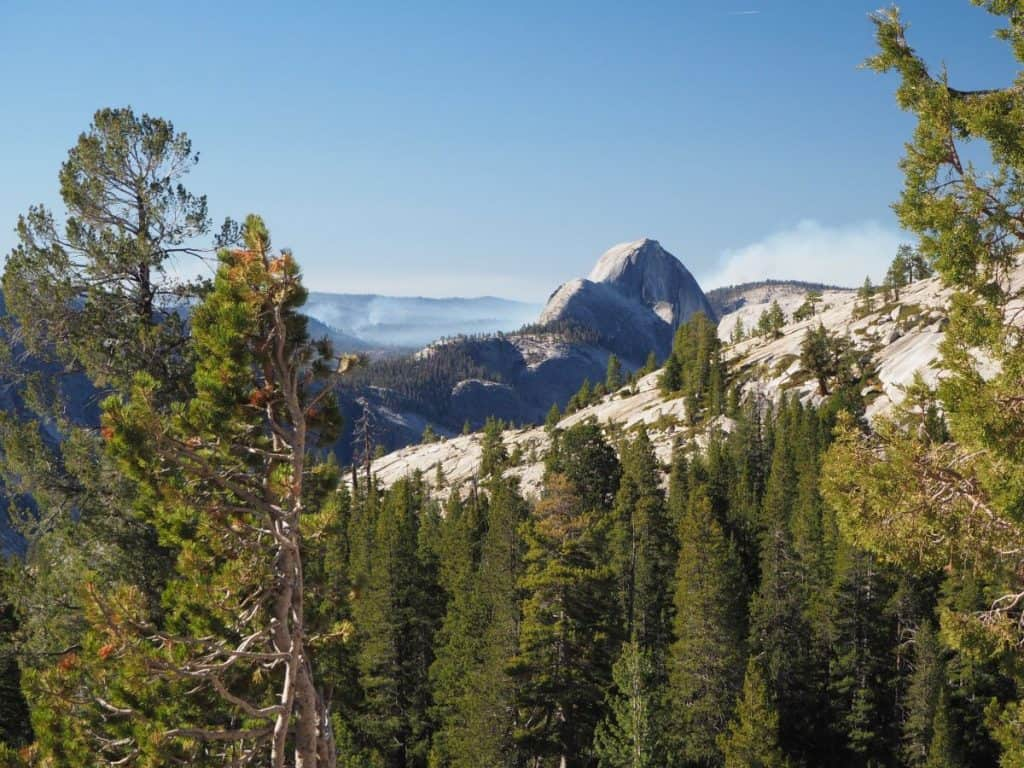 Half Dome from Tioga Road