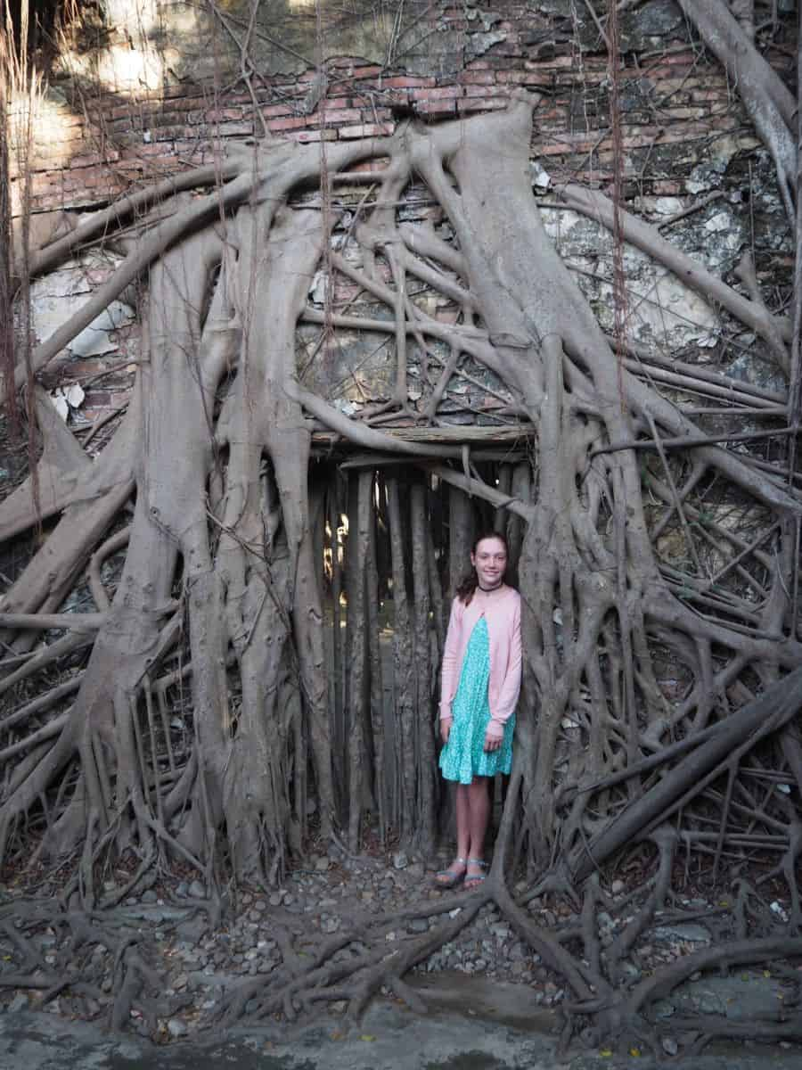 Root covered doorway of Anping Tree House