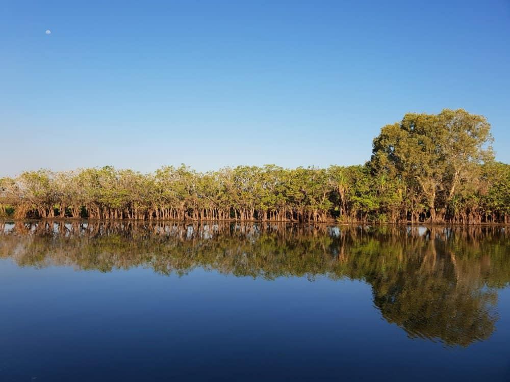 Yellow Water Wetlands Cruise Northern Territory Road Trip