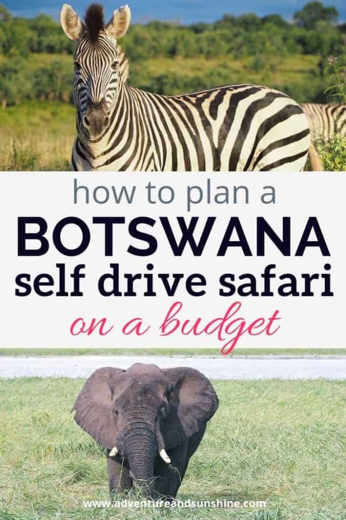 How to plan a Botswana self drive safari on a budget