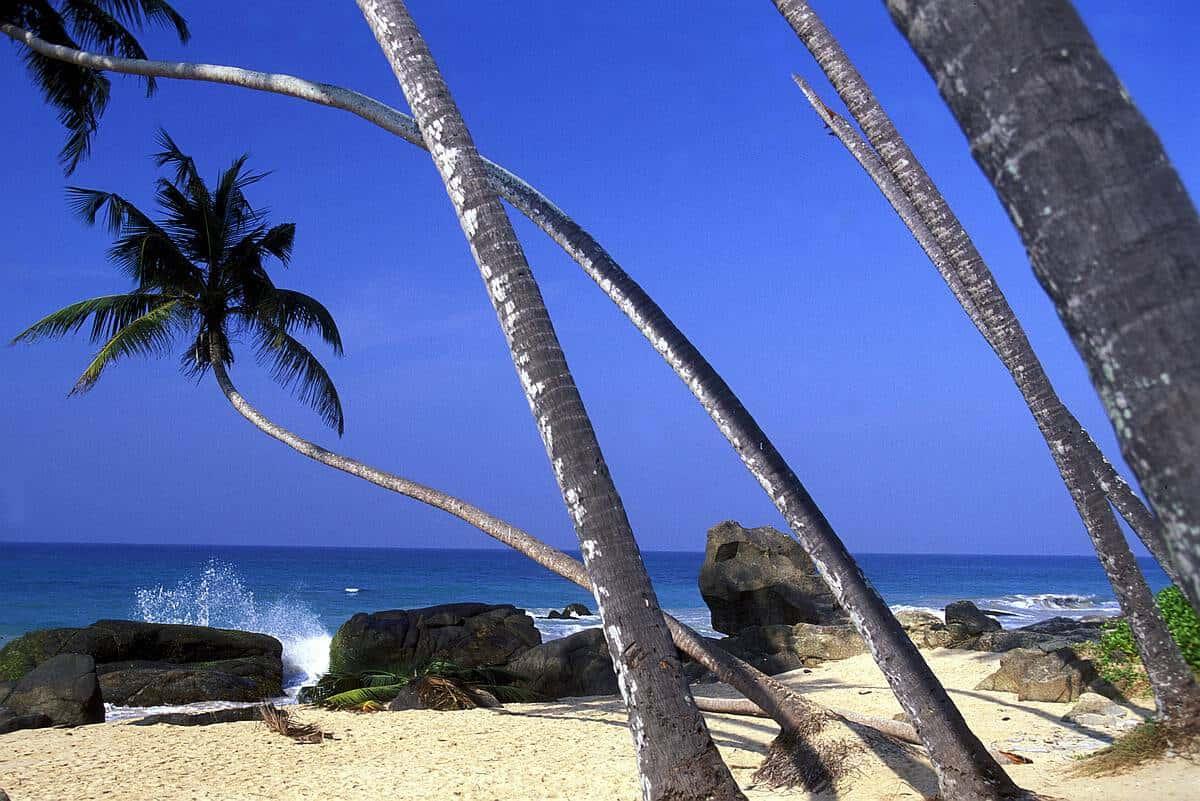 top things to do in hikkaduwa beach