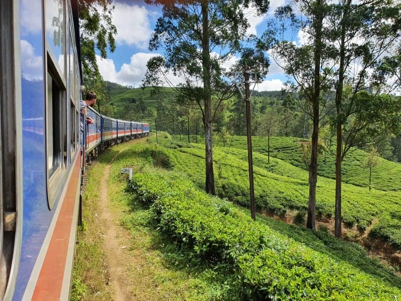 View from onboard the Kandy to Ella train through Tea Plantation