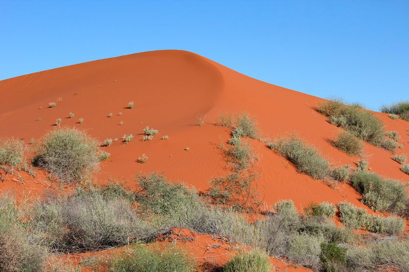 Sand Dune at Old Andado Simpson Desert Australia